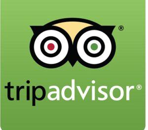 Tripadvisor Logo 3